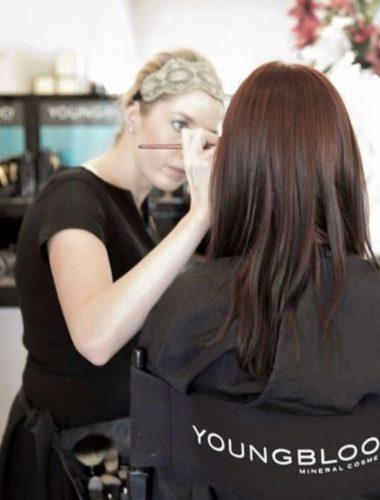 Makeup Basics Online Lesson